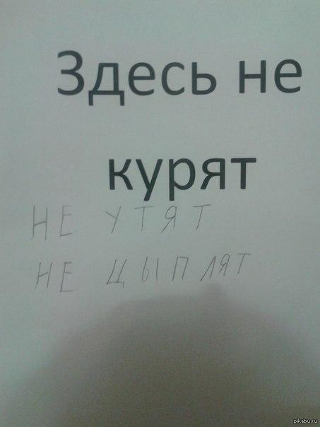 http://cs605416.vk.me/v605416681/76dc/wB6_plOOmWY.jpg
